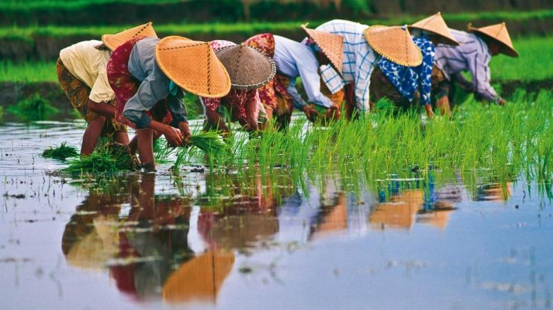 VIETNAM  EXPLORER tour privato Vietnam